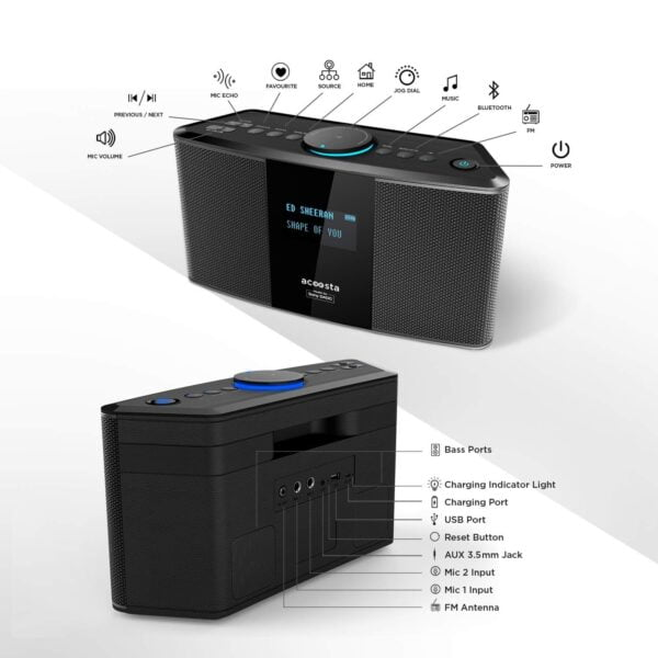Acoosta Uno ABT-2000PKW/21 High Fidelity Bluetooth Speaker with Built in Music by Sony DADC (Black)-5939