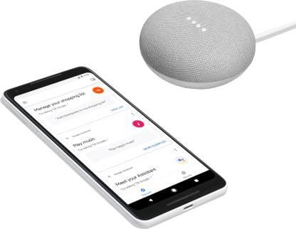 Google Home Mini (Chalk)-9774